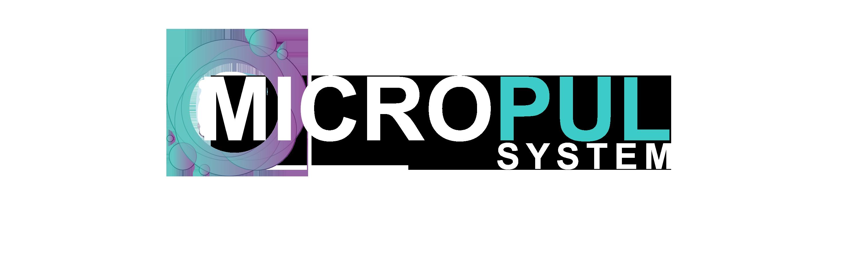 mpsystem logo oriz